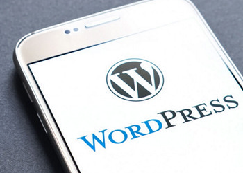 Wordpress for Beginners the Ultimate Step-By-Step Blueprint