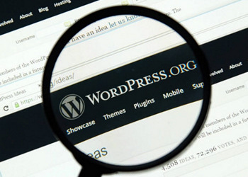 WordPress(R) Essentials for Business