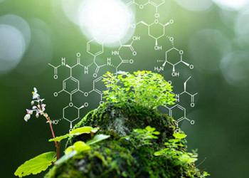 Fundamentals of Natural Science