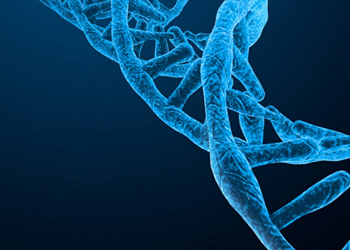 Fundamentals of Human Molecular Genetics ACCREDITED BY CPD